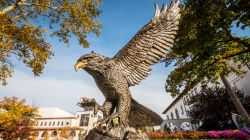 The hawk statue outside of College Hall during a clear, sunny day.