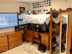 Another side of the room in a Triple in Blanton Hall with a bunk bed and a desk underneath.