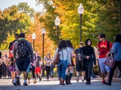 Students walking around in the spring on a main road in Montclair State.