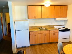 The kitchen in an apartment in Hawk Crossings with a fridge, sink and stove.