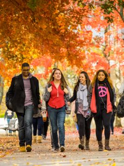 students walking under fall folliage
