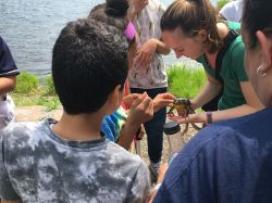 AmeriCorps member, Veronica Puza, shows students a bull frog during an ecology class.