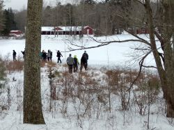 people walking in the woods