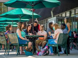 Image of a group of students socializing and sitting outside on campus at a cafe.