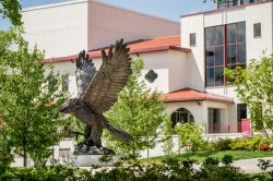 Photo of the Red Hawk statue.