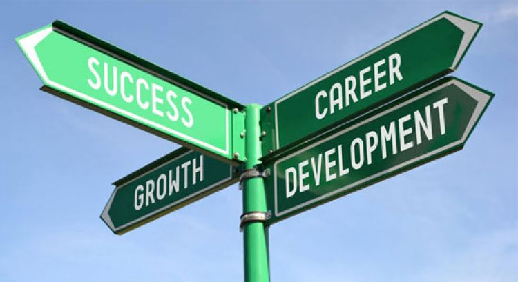 - The picture above shows the different directions that career development can lead you to.