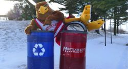 Feature image for Campus Recycling Is Easy!