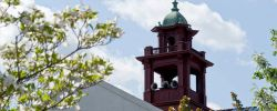 Picture of the old bell tower at the top of College Hall with a spring bloosom tree.