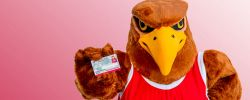 Picture of Rocky the Red Hawk holding his University ID card.
