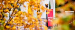 Closeup picture of fall leaves on a tree with the Montclair State University banner in the background