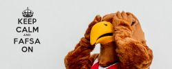 Picture of Rocky the Red Hawk with his hands over this eyes and the words Keep Calm FAFSA On