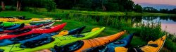 Picture of colorful kayaks lined up on the bank of a river.