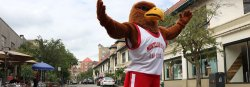 Rocky the Red Hawk standing in the heart of Montclair downtown.