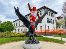 Rocky the Red Hawk on top of the campus hawk statue