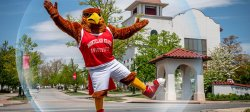 Rocky the Red Hawk in his campus safe bubble.