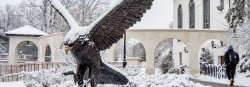 Picture of the Campus Red Hawk statue covered in snow.