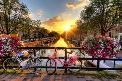 Photo of view of sunrise in Amsterdam from bridge with bicycles and flowers.