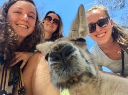 Students pose with wallaby in Australia