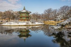 Photo of Palace of Korea in Seoul
