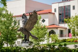 Red Hawk Statue in front of campus building on sunny day.