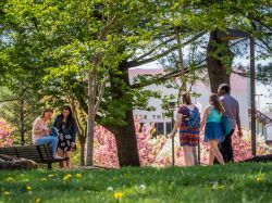Photo of students walking and sitting on campus on a spring day.