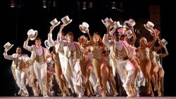 A group of actors and dancers in a chorus line