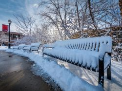 Three benches along campus pathway covered with snow.