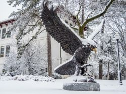 Large MSU Red Hawk bronze statue covered in snow.