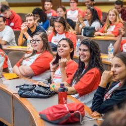 Photo of student ambassadors at an orientation organizing session.