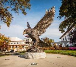 Photo of Red Hawk statue on campus