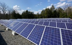 Image of active solar panel farm at the Montclair State University School of Conservation